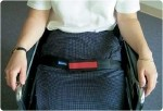 Safe-t mate Seat Belt with Alarm: 46